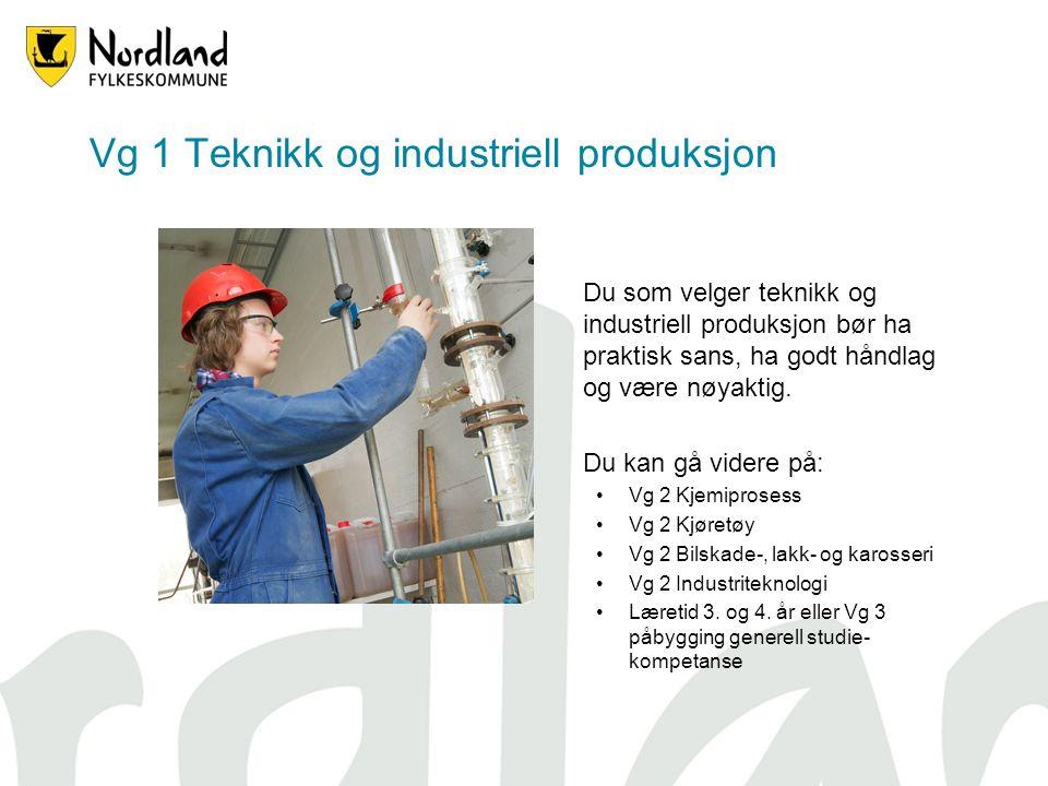 Vg 1 Teknikk og industriell produksjon Du som velger teknikk og industriell produksjon bør ha praktisk sans, ha godt håndlag og være nøyaktig.