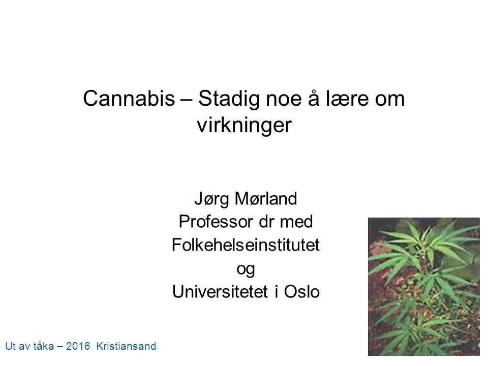 Cannabis – Stadig noe å lære om virkninger Jørg Mørland Professor dr med Folkehelseinstitutet og Universitetet i Oslo Ut av tåka – 2016 Kristiansand