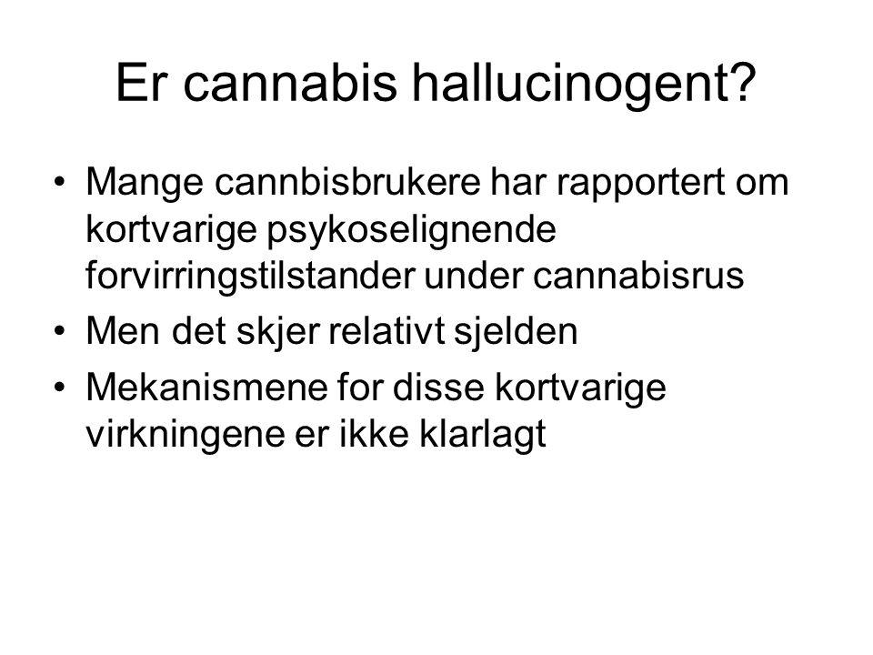 Er cannabis hallucinogent.