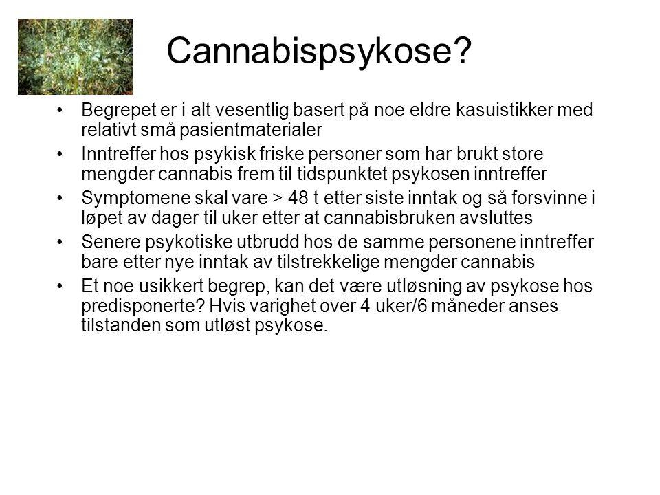 Cannabispsykose.