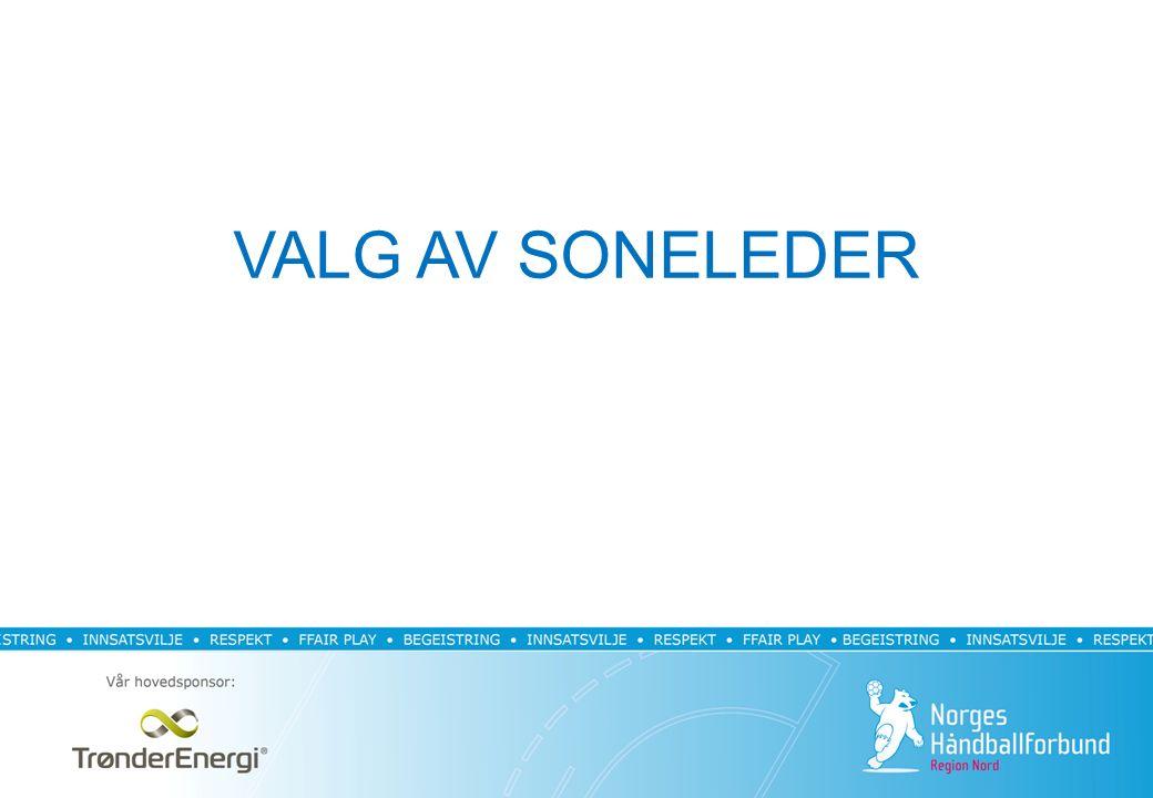 VALG AV SONELEDER