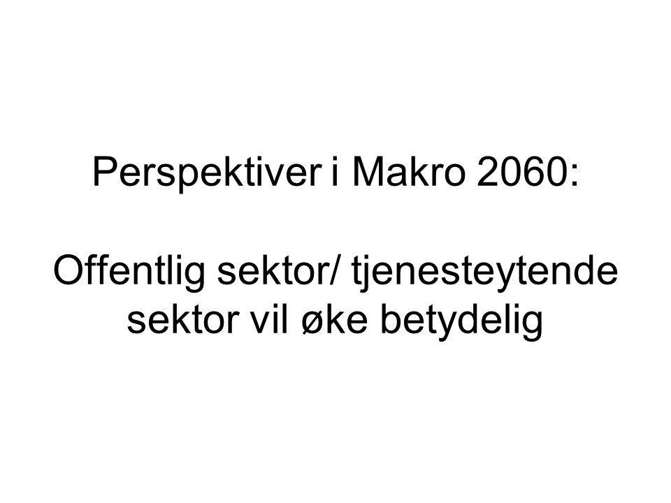 Perspektiver i Makro 2060: Offentlig sektor/ tjenesteytende sektor vil øke betydelig