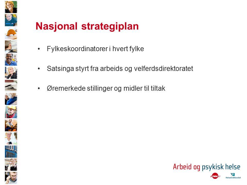 Nasjonal strategiplan Fylkeskoordinatorer i hvert fylke Satsinga styrt fra arbeids og velferdsdirektoratet Øremerkede stillinger og midler til tiltak