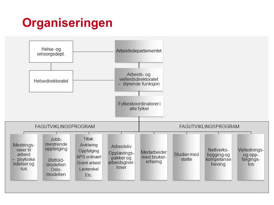 Organiseringen Arbeidsdepartementet Mestrings- veier til arbeid – psykiske lidelser og rus Jobb- mestrende oppfølging Østfold- modellen Oslo- modellen Tiltak: Avklaring Oppfølging APS ordinært Grønt arbeid Lavterskel Etc.