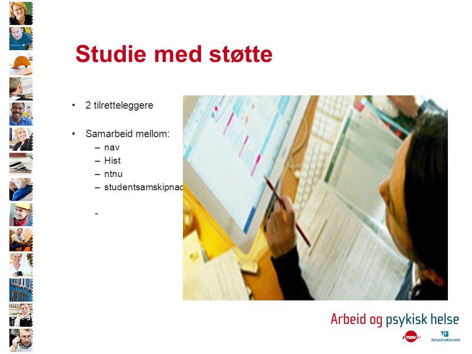 Studie med støtte 2 tilretteleggere Samarbeid mellom: –nav –Hist –ntnu –studentsamskipnaden -