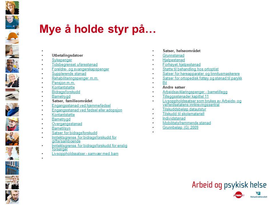 Arbeidsmarkedstiltak 4 distrikt (Oppdal, Orkanger, Melhus og Hitra/Frøya) Trondheim –Prima, Norservice, Kim- senteret, Stavne, Euroskolen, Høstasanden gård,