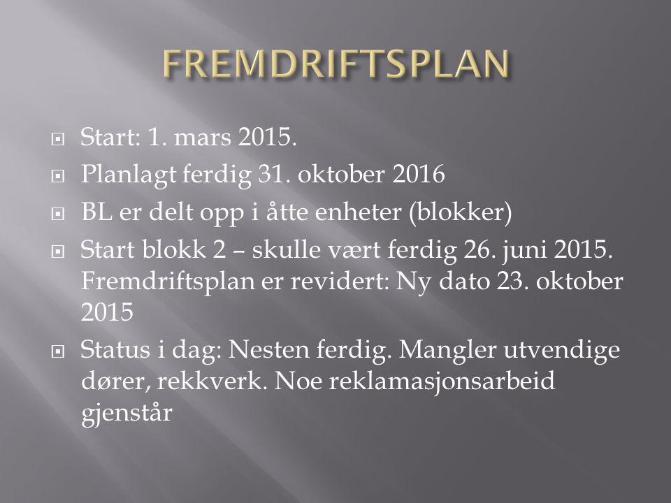  Start: 1. mars 2015.  Planlagt ferdig 31. oktober 2016  BL er delt opp i åtte enheter (blokker)  Start blokk 2 – skulle vært ferdig 26. juni 2015