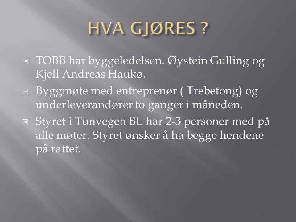 TOBB har byggeledelsen. Øystein Gulling og Kjell Andreas Haukø.  Byggmøte med entreprenør ( Trebetong) og underleverandører to ganger i måneden. 