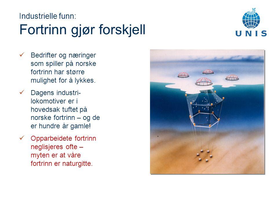 Industrielle funn: Fortrinn gjør forskjell Bedrifter og næringer som spiller på norske fortrinn har større mulighet for å lykkes.