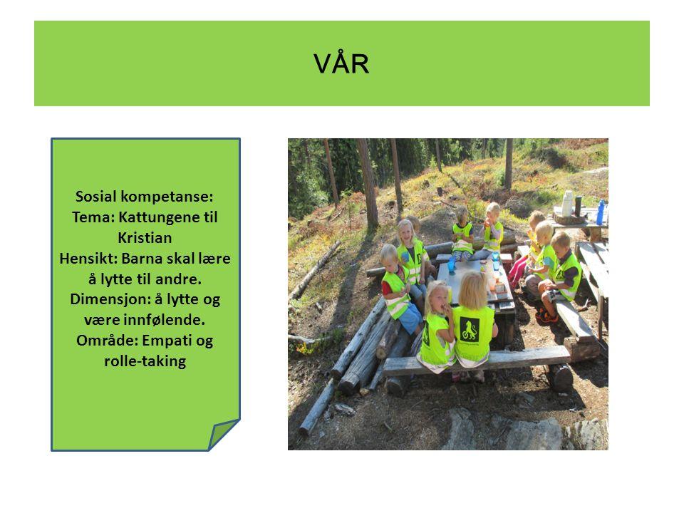 VÅR Sosial kompetanse: Tema: Kattungene til Kristian Hensikt: Barna skal lære å lytte til andre.