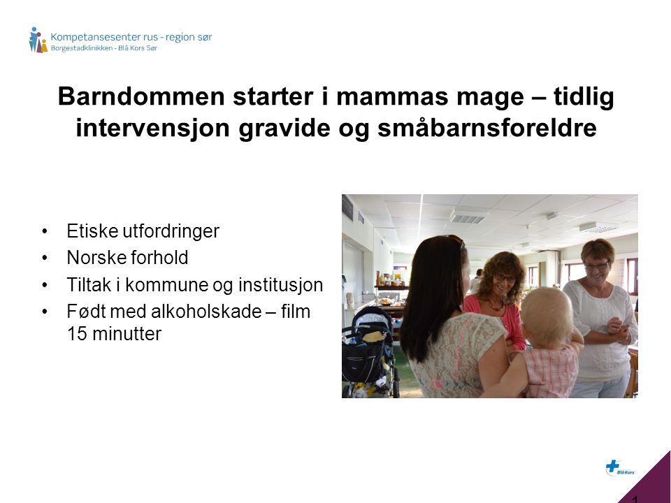 Barndommen starter i mammas mage – tidlig intervensjon gravide og småbarnsforeldre Etiske utfordringer Norske forhold Tiltak i kommune og institusjon