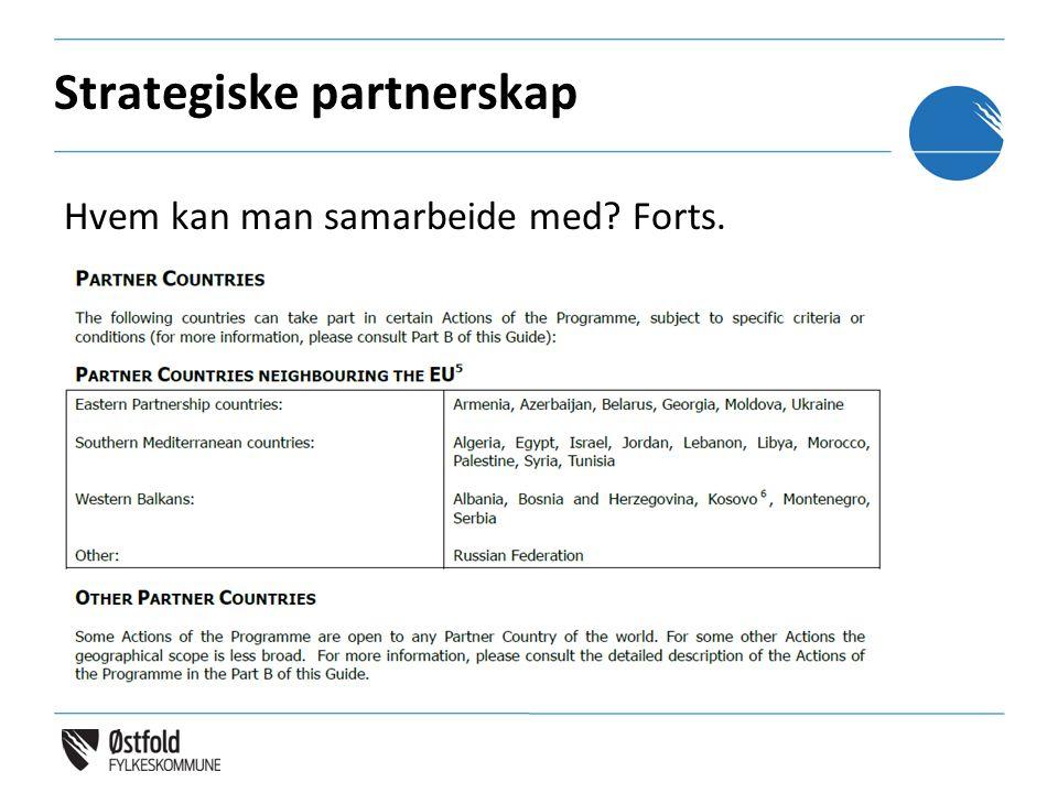 Strategiske partnerskap Hvem kan man samarbeide med? Forts.