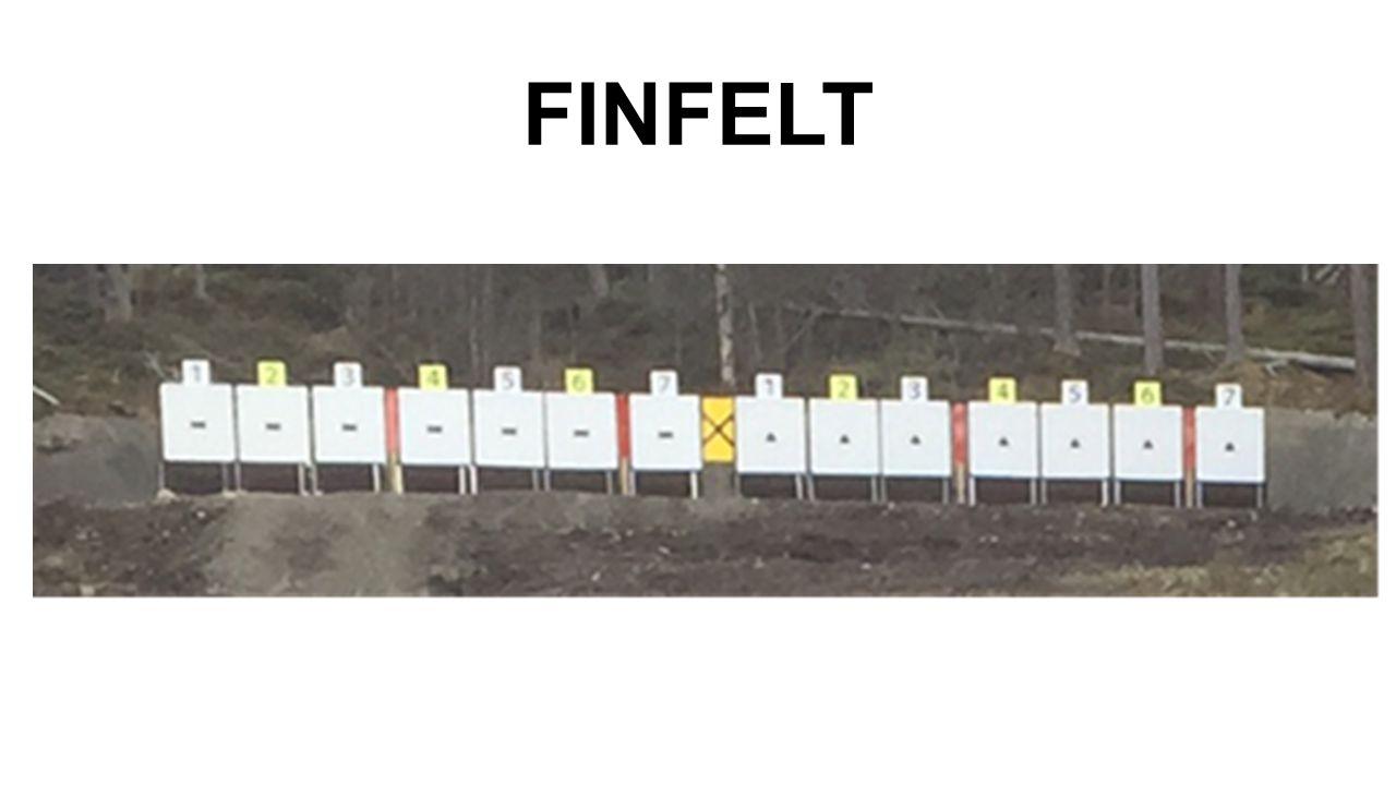 FINFELT
