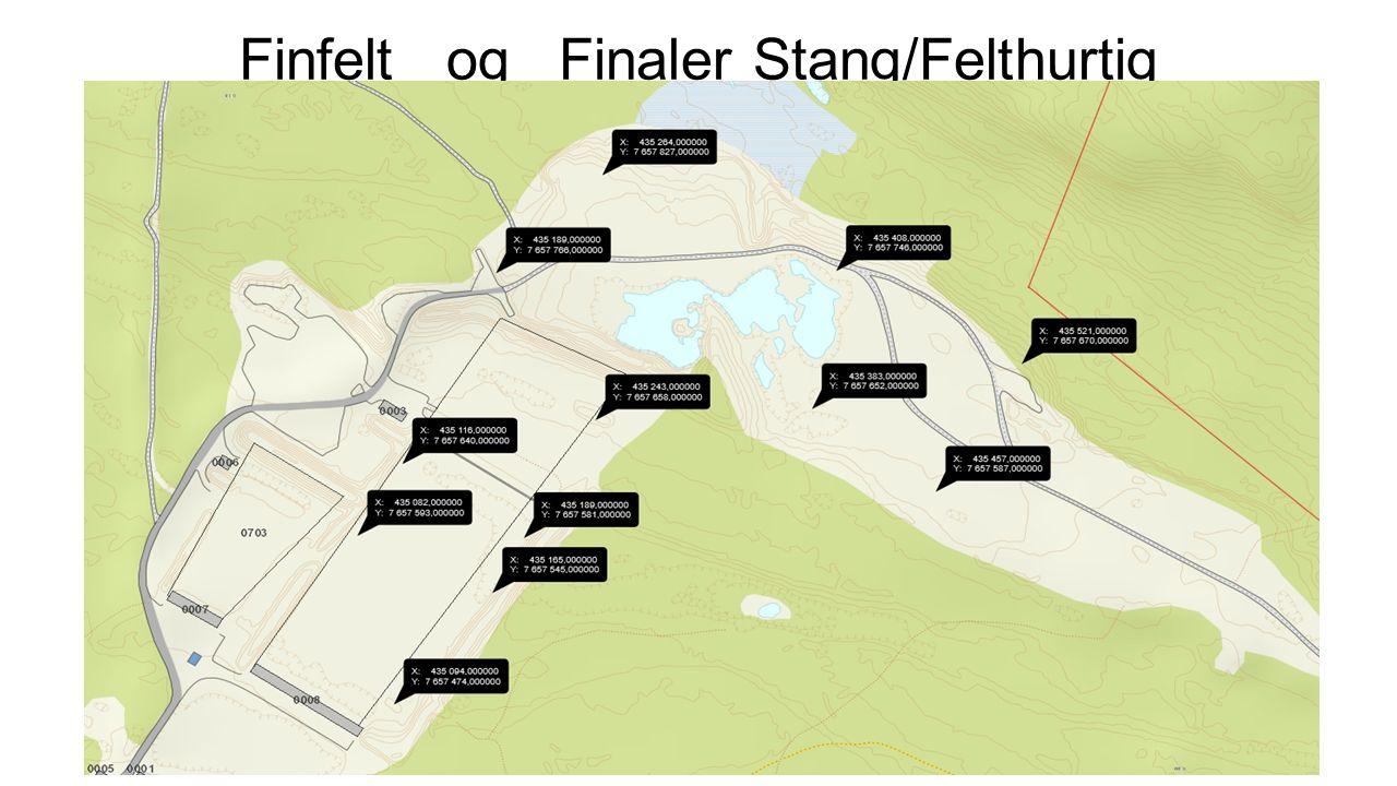 Finfelt og Finaler Stang/Felthurtig