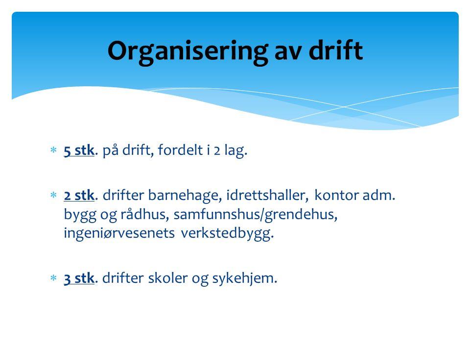  5 stk. på drift, fordelt i 2 lag.  2 stk. drifter barnehage, idrettshaller, kontor adm.