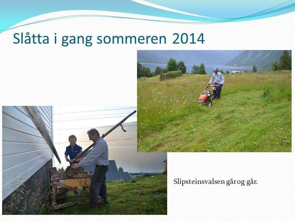 Slåtta i gang sommeren 2014 Slipsteinsvalsen går og går.