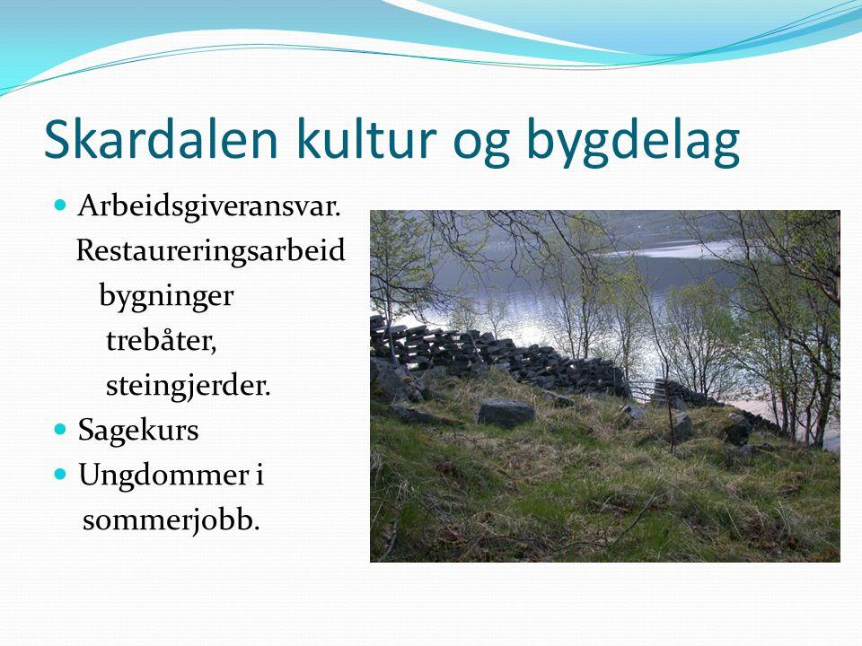 Skardalen kultur og bygdelag Arbeidsgiveransvar.