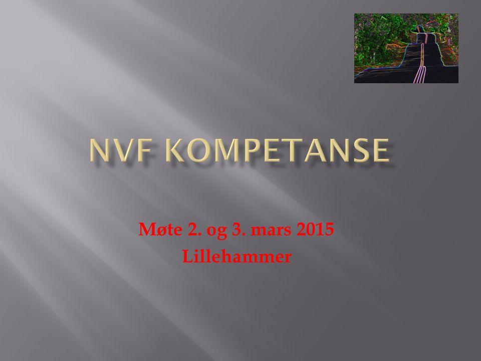Møte 2. og 3. mars 2015 Lillehammer
