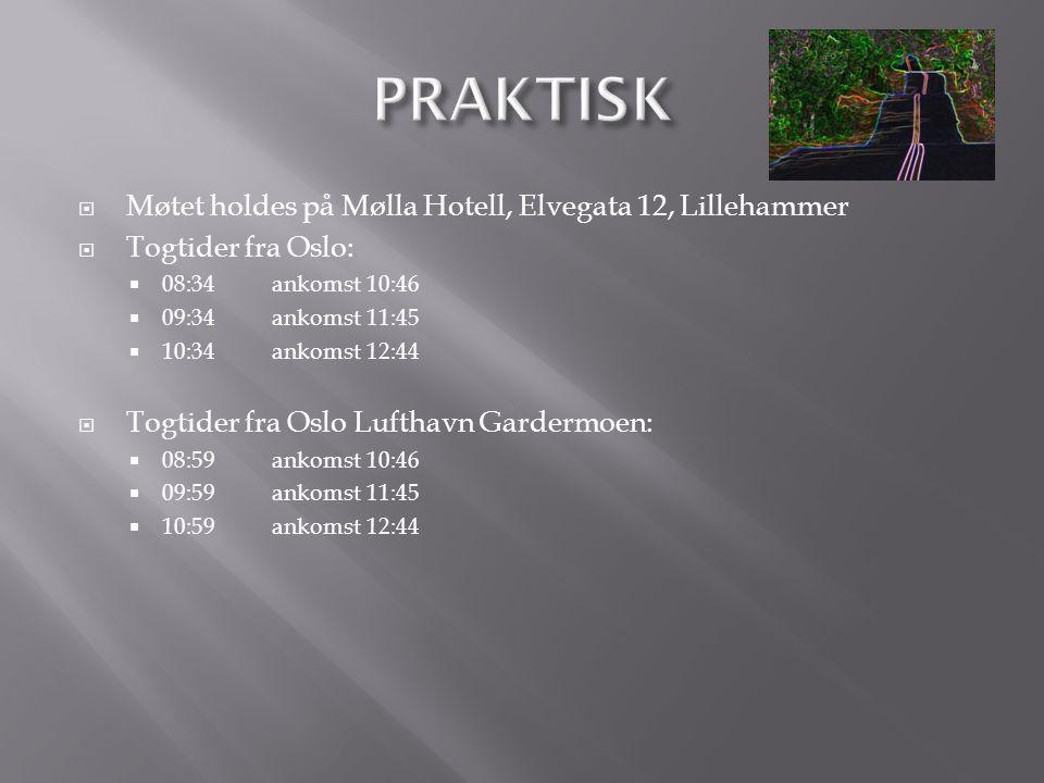  1200 - 1300Lunsj på konferansehotellet  1300Møtestart Velkommen til Lillehammer ved Guttorm - hva har skjedd etter OL 1994.