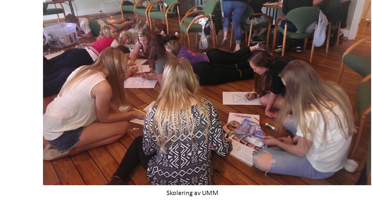 Skolering av UMM