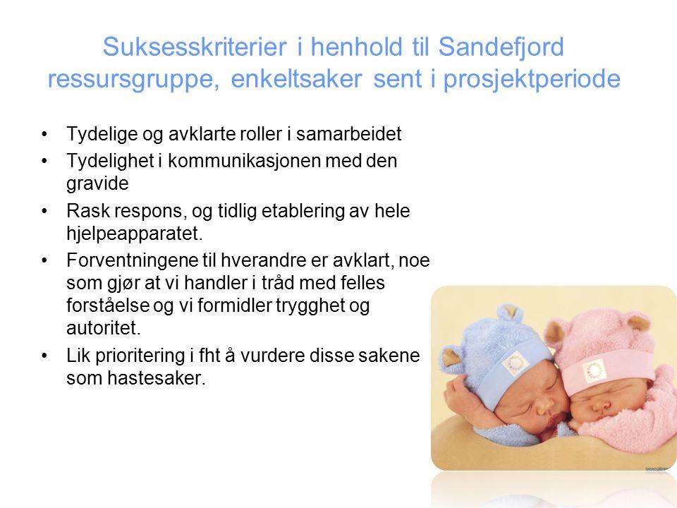 Suksesskriterier i henhold til Sandefjord ressursgruppe, enkeltsaker sent i prosjektperiode Tydelige og avklarte roller i samarbeidet Tydelighet i kommunikasjonen med den gravide Rask respons, og tidlig etablering av hele hjelpeapparatet.