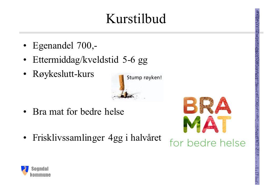 Sogndal kommune Kurstilbud Egenandel 700,- Ettermiddag/kveldstid 5-6 gg Røykeslutt-kurs Bra mat for bedre helse Frisklivssamlinger 4gg i halvåret