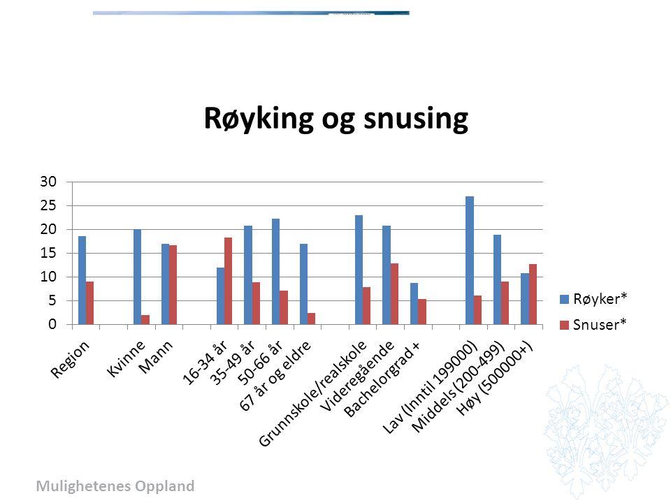 Mulighetenes Oppland Røyking og snusing