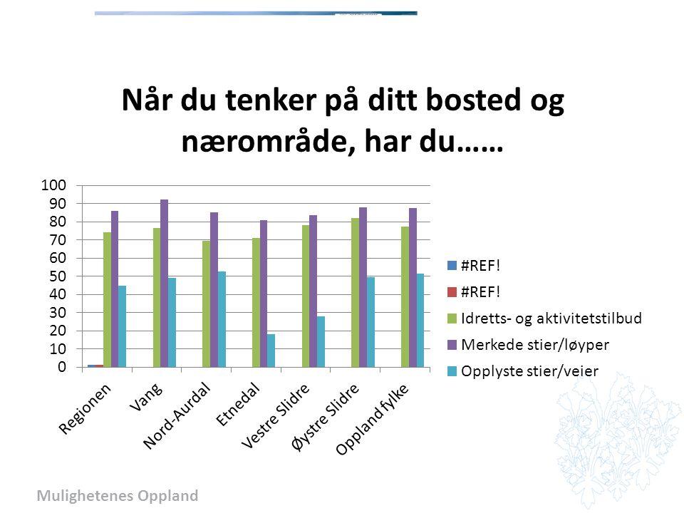 Mulighetenes Oppland Sosialt miljø – møteplasser 73 % i Valdres besøker museum og kunstutstilling, konsert, teater og kino, kirke og bedehus, idrettsarrangement, bibliotek og, kafe, ungdomsklubb og andre sosiale møteplasser
