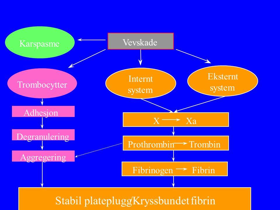 Vevskade Trombocytter Internt system Eksternt system Adhesjon Degranulering Aggregering Stabil plateplugg/Kryssbundet fibrin Fibrinogen Fibrin Prothrombin Trombin X Xa Karspasme