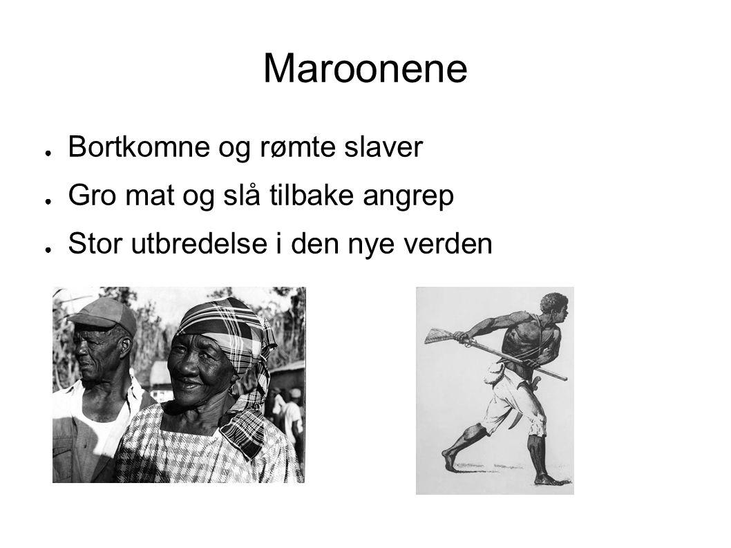 Maroonene ● Bortkomne og rømte slaver ● Gro mat og slå tilbake angrep ● Stor utbredelse i den nye verden