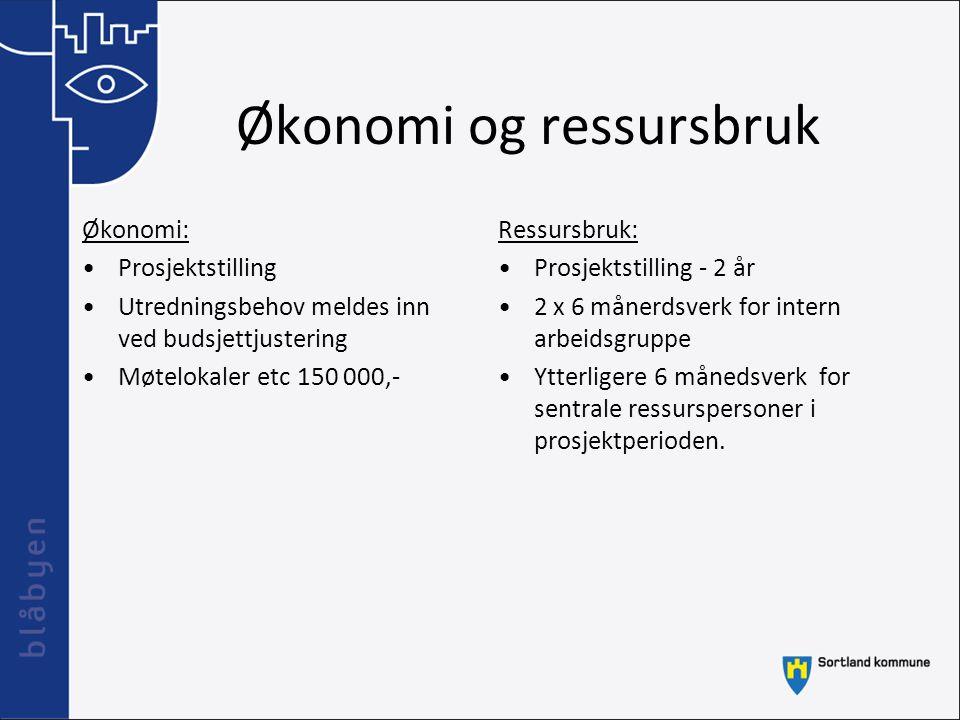 Økonomi og ressursbruk Økonomi: Prosjektstilling Utredningsbehov meldes inn ved budsjettjustering Møtelokaler etc 150 000,- Ressursbruk: Prosjektstill