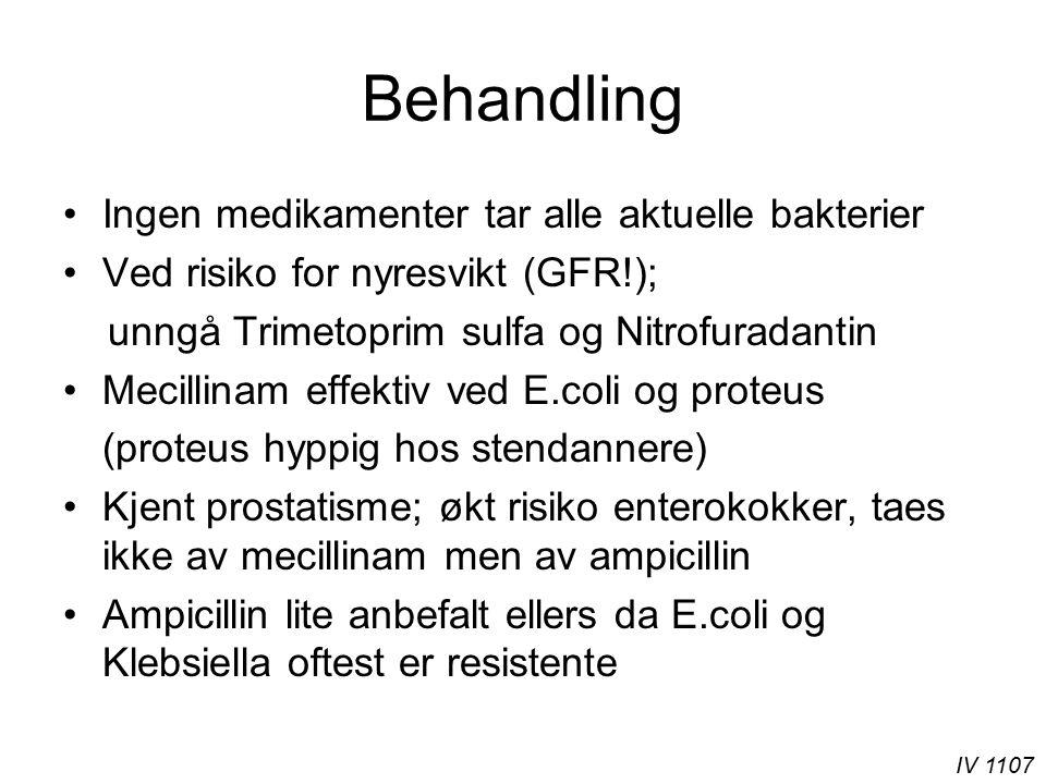 IV 1107 Behandling Ingen medikamenter tar alle aktuelle bakterier Ved risiko for nyresvikt (GFR!); unngå Trimetoprim sulfa og Nitrofuradantin Mecillin