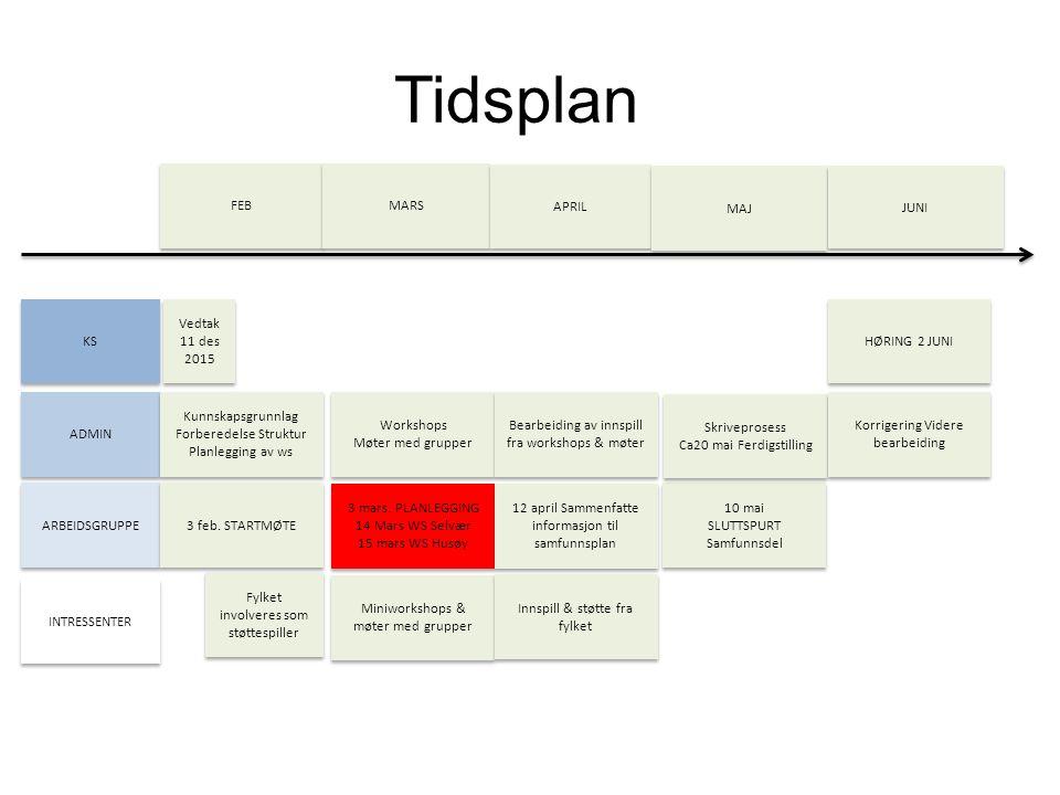Tidsplan KS ADMIN ARBEIDSGRUPPE INTRESSENTER FEB MARS APRIL MAJ JUNI Kunnskapsgrunnlag Forberedelse Struktur Planlegging av ws Kunnskapsgrunnlag Forbe