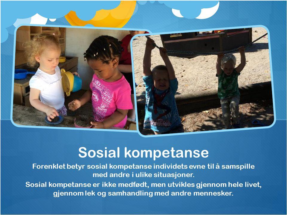 Forenklet betyr sosial kompetanse individets evne til å samspille med andre i ulike situasjoner.