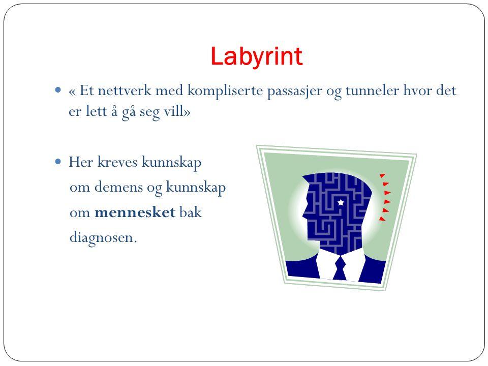 Labyrint « Et nettverk med kompliserte passasjer og tunneler hvor det er lett å gå seg vill» Her kreves kunnskap om demens og kunnskap om mennesket ba