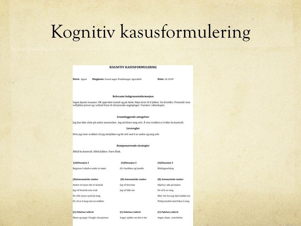 Oppgaver gitt forrige samling Prøv å benytte minst 5 ABC analyser i forhold til situasjoner i egen hverdag Prøv å sett opp en kognitiv kasusformulering Les tilsendt kapittel om KT Tenk gjennom hvordan du kan integrere KT i egen praksis.