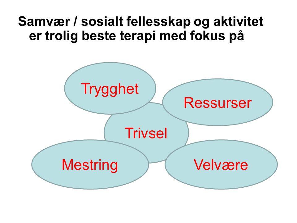Samvær / sosialt fellesskap og aktivitet er trolig beste terapi med fokus på Trivsel Trygghet Ressurser MestringVelvære