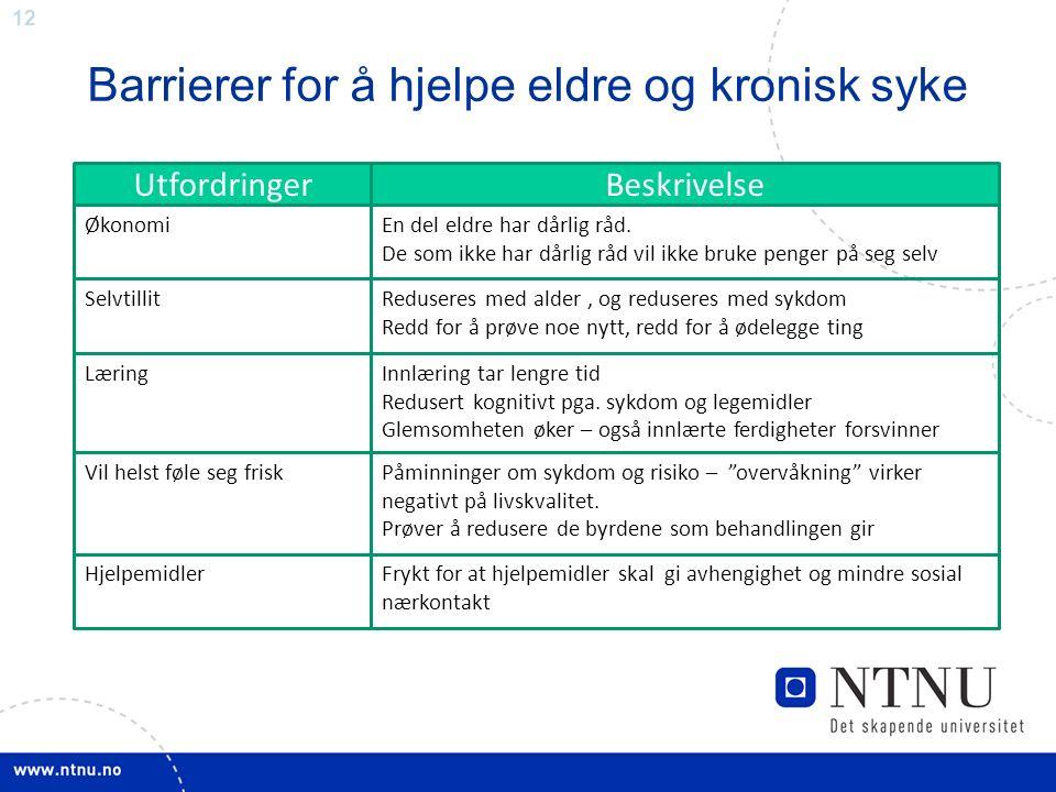 12 Barrierer for å hjelpe eldre og kronisk syke UtfordringerBeskrivelse ØkonomiEn del eldre har dårlig råd.