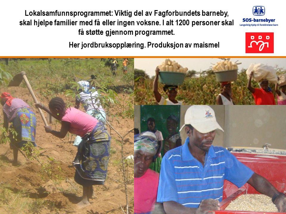 Lokalsamfunnsprogrammet: Viktig del av Fagforbundets barneby, skal hjelpe familier med få eller ingen voksne.