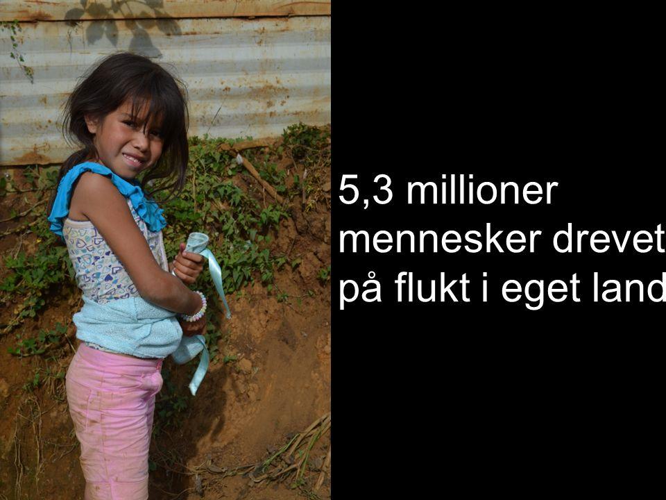 5,3 millioner mennesker drevet på flukt i eget land