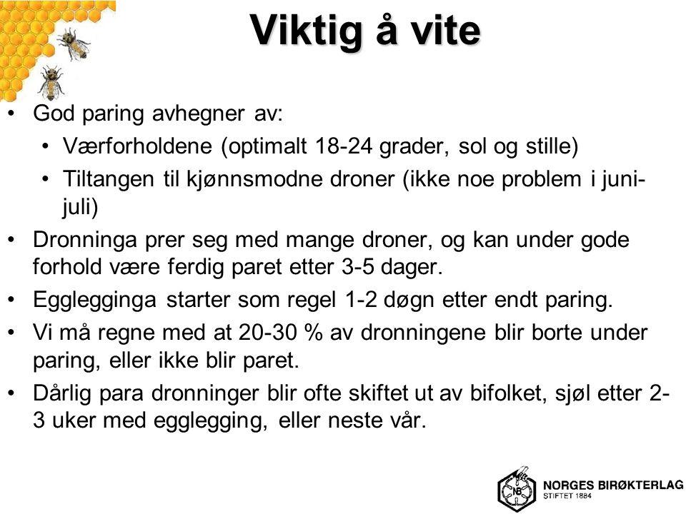 Viktig å vite God paring avhegner av: Værforholdene (optimalt 18-24 grader, sol og stille) Tiltangen til kjønnsmodne droner (ikke noe problem i juni-