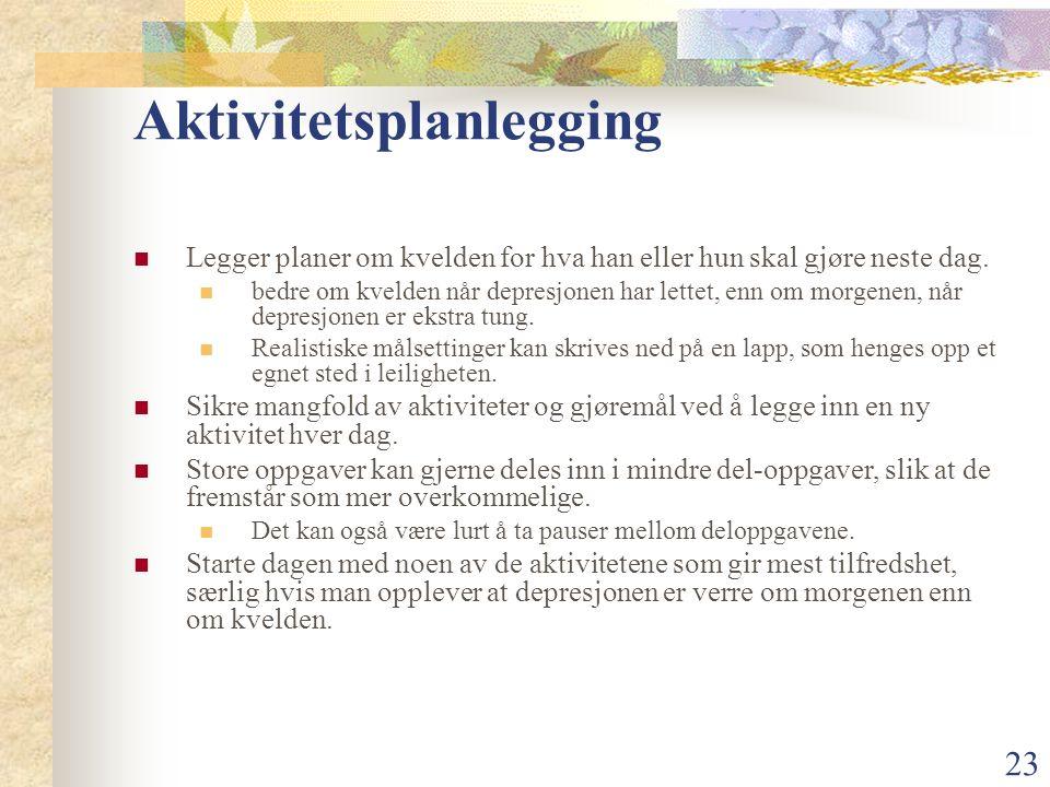 23 Aktivitetsplanlegging Legger planer om kvelden for hva han eller hun skal gjøre neste dag.