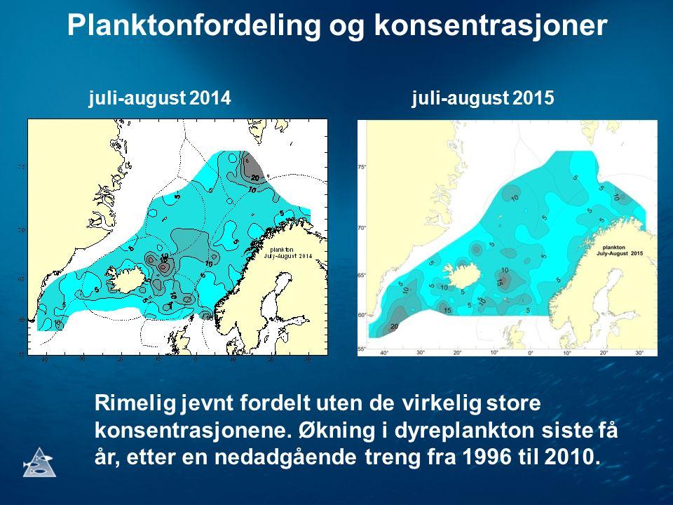 Planktonfordeling og konsentrasjoner juli-august 2014juli-august 2015 Rimelig jevnt fordelt uten de virkelig store konsentrasjonene. Økning i dyreplan