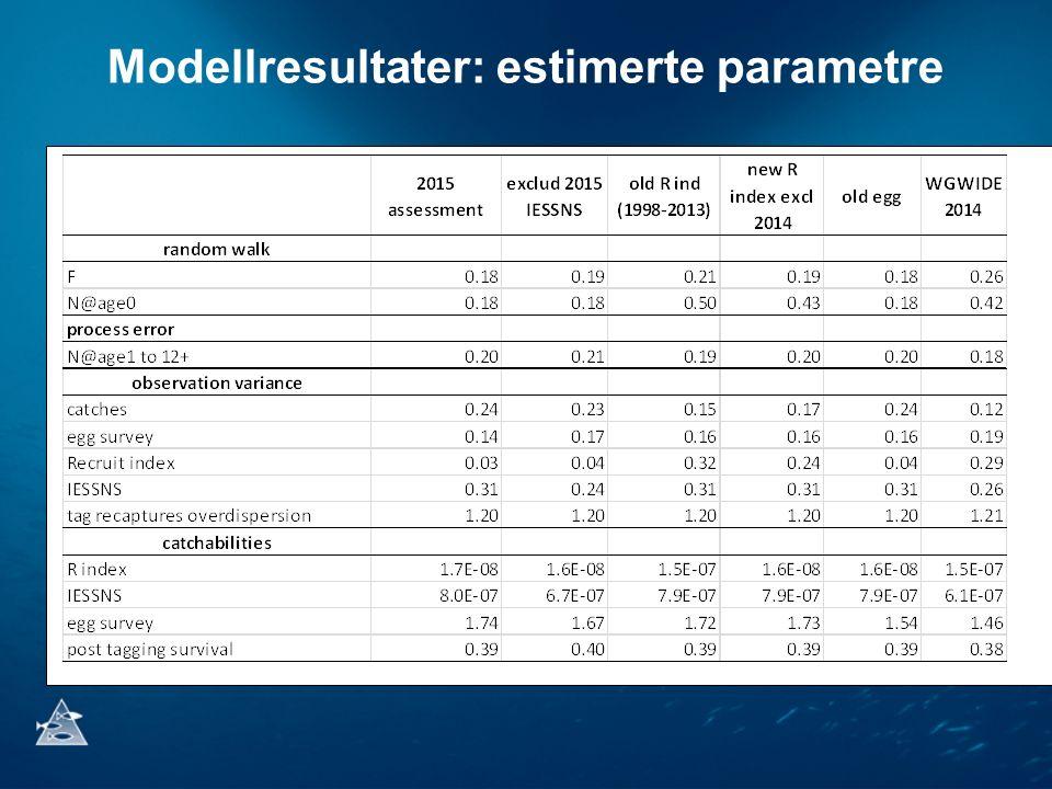 Modellresultater: estimerte parametre
