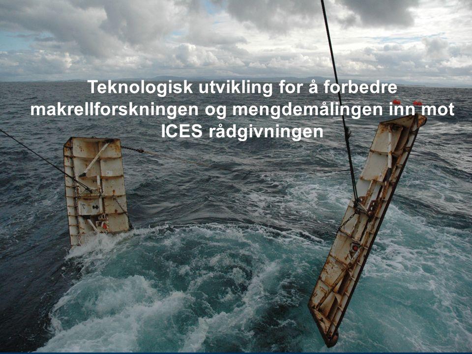Teknologisk utvikling for å forbedre makrellforskningen og mengdemålingen inn mot ICES rådgivningen