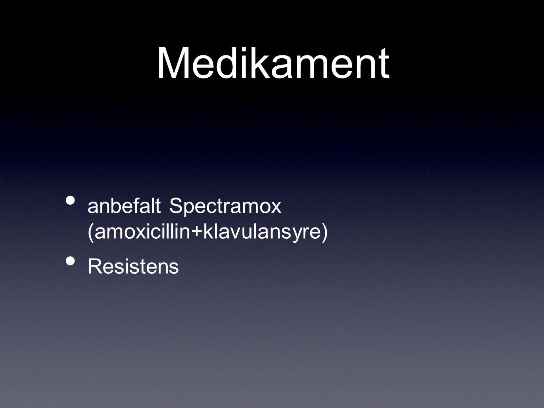 Medikament anbefalt Spectramox (amoxicillin+klavulansyre) Resistens
