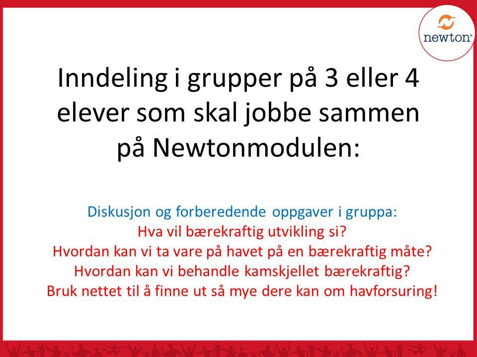 Inndeling i grupper på 3 eller 4 elever som skal jobbe sammen på Newtonmodulen: Diskusjon og forberedende oppgaver i gruppa: Hva vil bærekraftig utvik