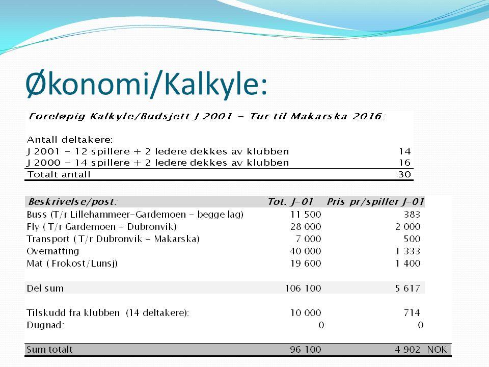 Økonomi/Kalkyle: