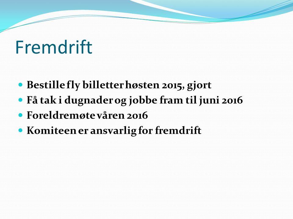 Fremdrift Bestille fly billetter høsten 2015, gjort Få tak i dugnader og jobbe fram til juni 2016 Foreldremøte våren 2016 Komiteen er ansvarlig for fremdrift