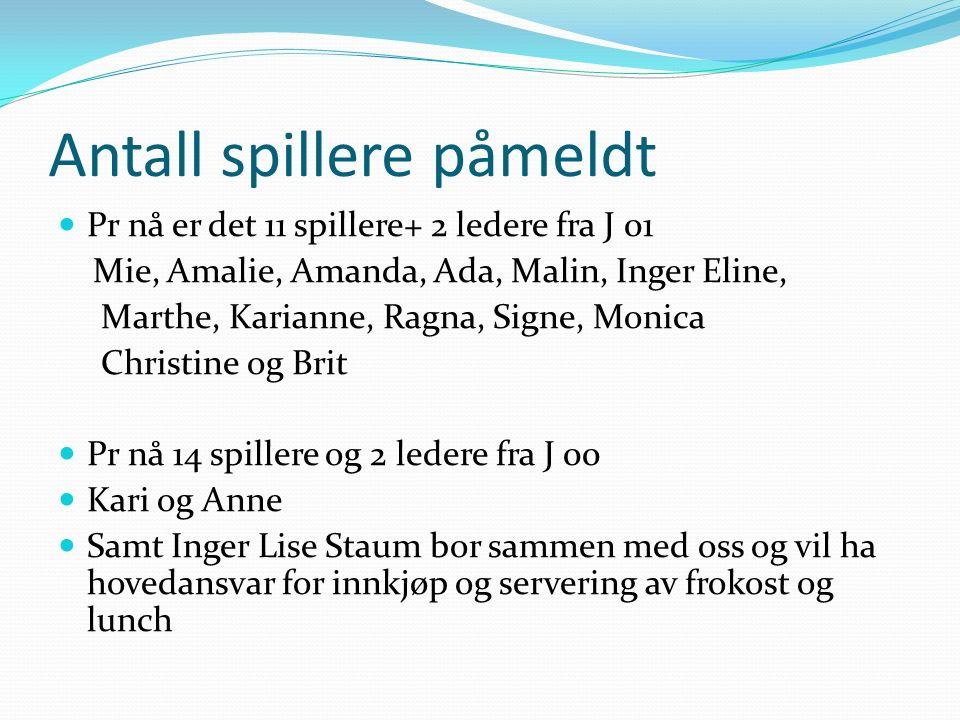 Antall spillere påmeldt Pr nå er det 11 spillere+ 2 ledere fra J 01 Mie, Amalie, Amanda, Ada, Malin, Inger Eline, Marthe, Karianne, Ragna, Signe, Moni